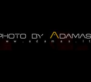 adamas photography